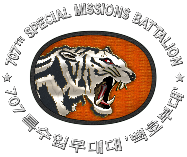 707특수임무대대 로고