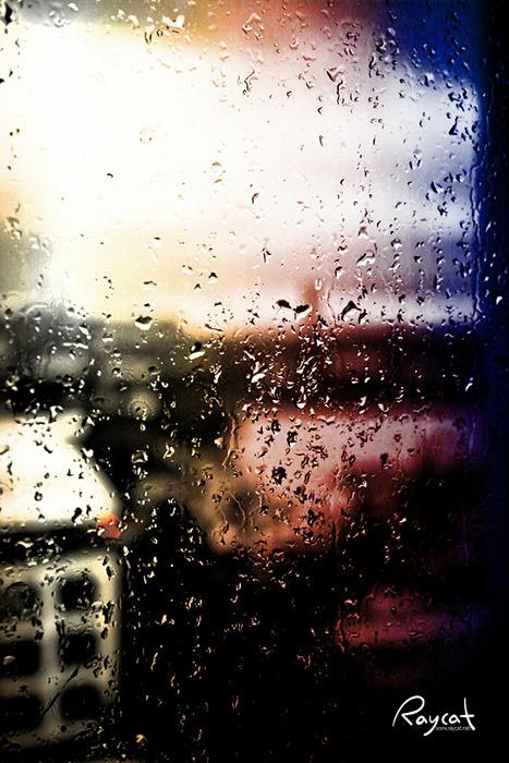 비 내리는 창