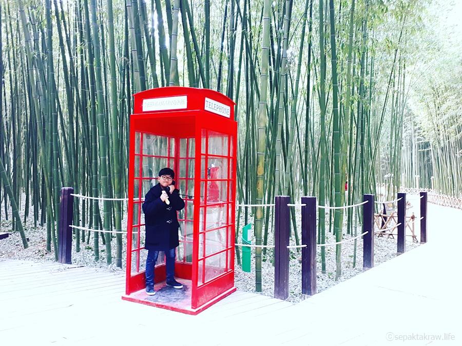 울산여행_대나무숲