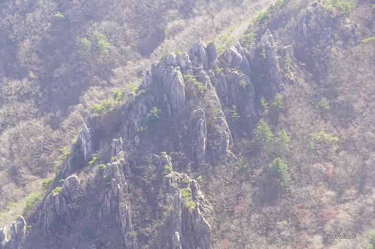 매화산의 바위들