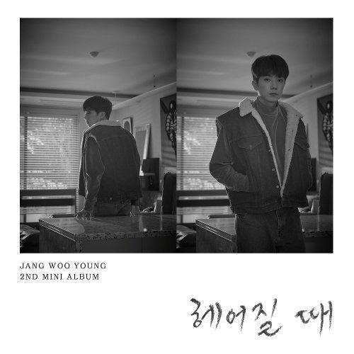 Jang Woo Young - Quit Lyrics [English, Romanization]