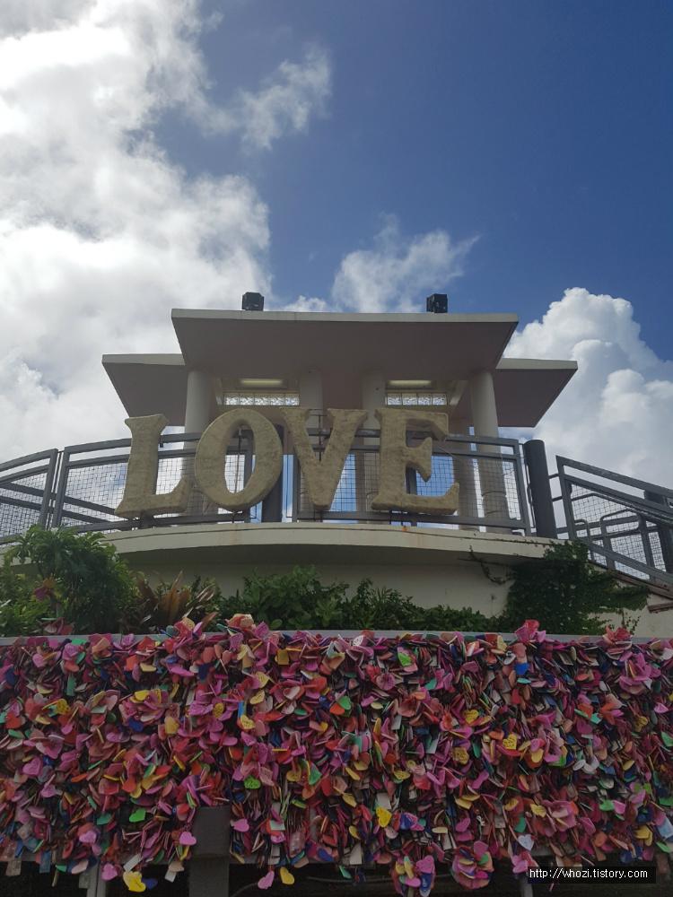 사랑의 절벽