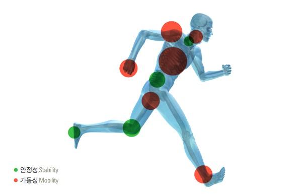 부상 예방을 위한 운동 전 스트레칭 방법(조인트 모빌리티, 가동성 운동, 서울역PT)