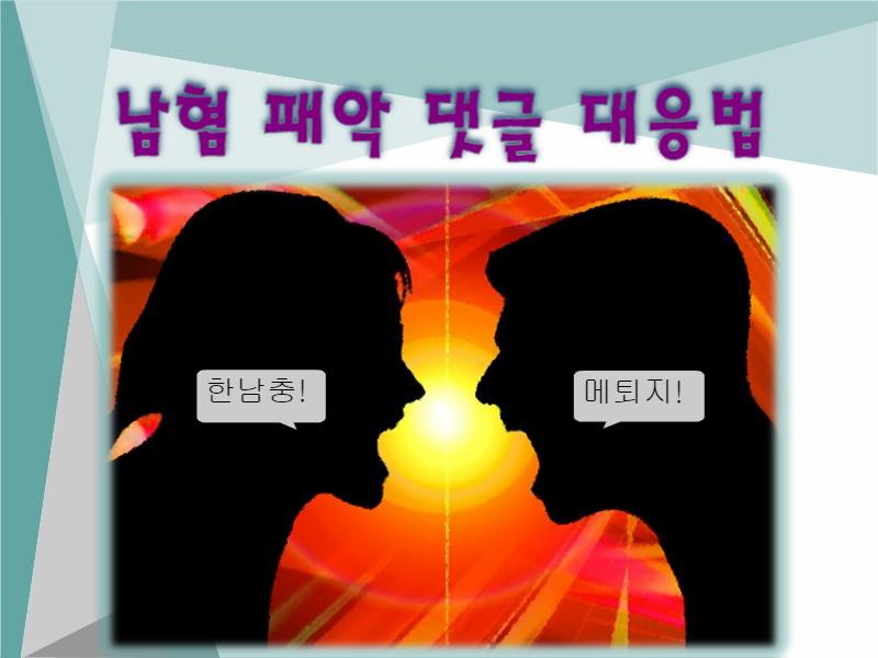 남혐 패악 댓글을 대하는 우리의 자세 (미러링에는 역미러링으로)