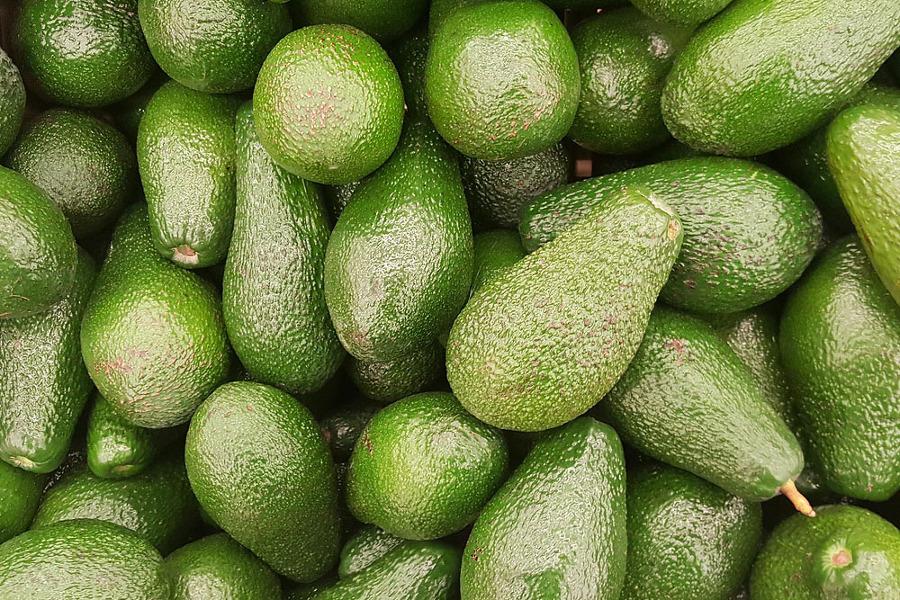 아보카도 효능 피부건강 항산화제