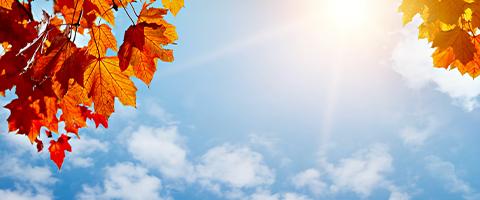 가을철 미세먼지, 리뉴얼로 강화된 KT 에어맵코리아로 대응하세요!
